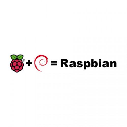 raspbian_logo-450x450-500x500