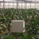 愛知県農総試で開催された実用化技術研究会で発表させて頂きました。